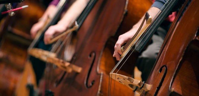 Close up image of a person playing the double bass.