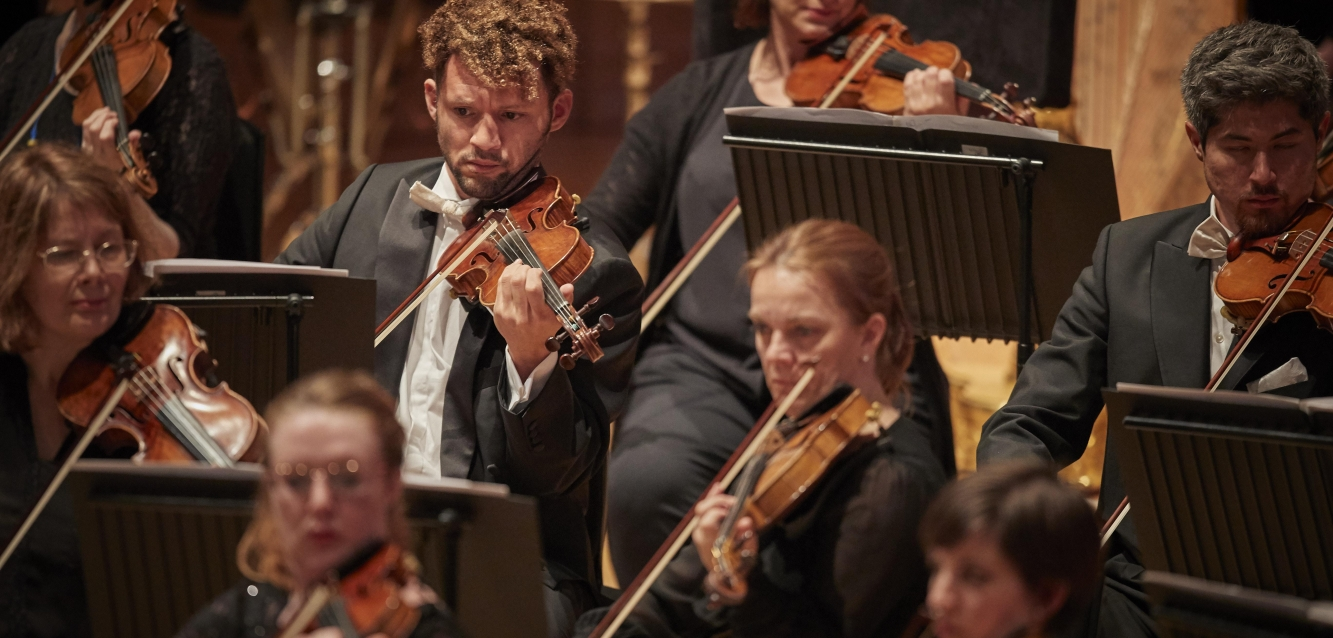Six violinists in the WNO orchestra.